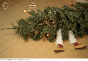 HELP! The Dog knocked over the Christmas Tree!